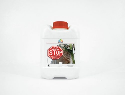Alga Muschio Stop